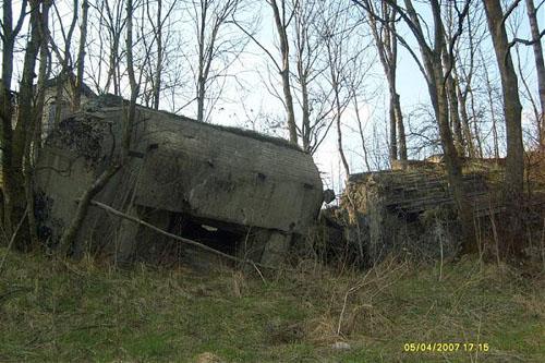 Molotov Line - Remains Casemate Sanok (D)