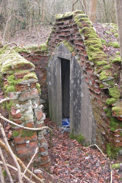 Air-Raid Shelter Withington Woods