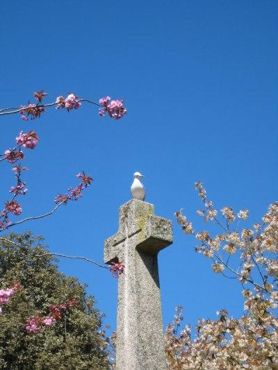 War Memorial Kimberley Park