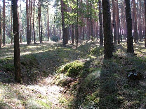 Ostwall - German Trench
