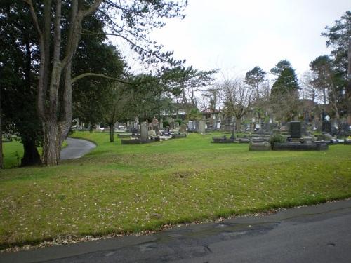 Oorlogsgraven van het Gemenebest Cwmgelly Cemetery
