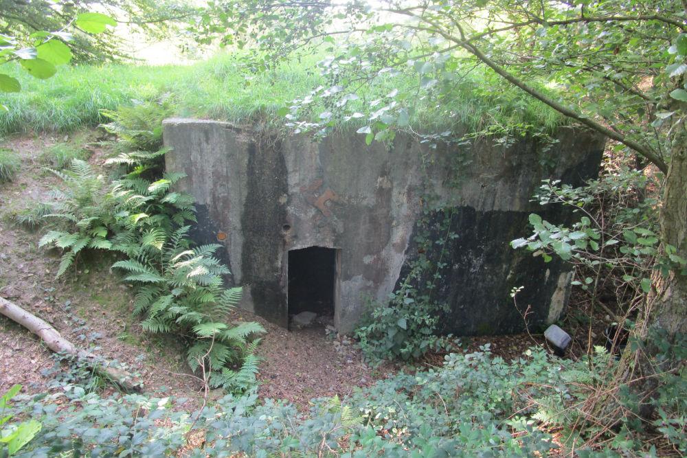 Westwall Bunkers Münsterbusch
