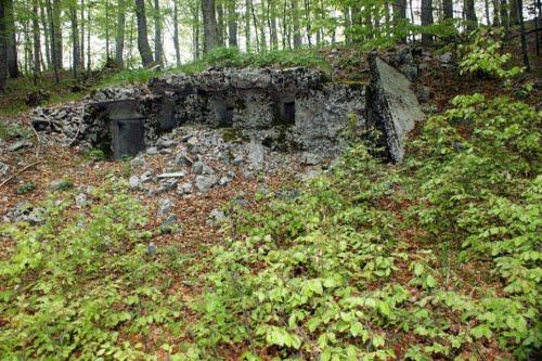 Alpenmuur - MG-bunker Trstenik