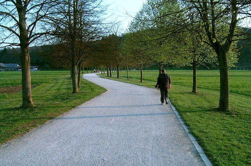 Trail of Remembrance and Comradeship Ljubljana