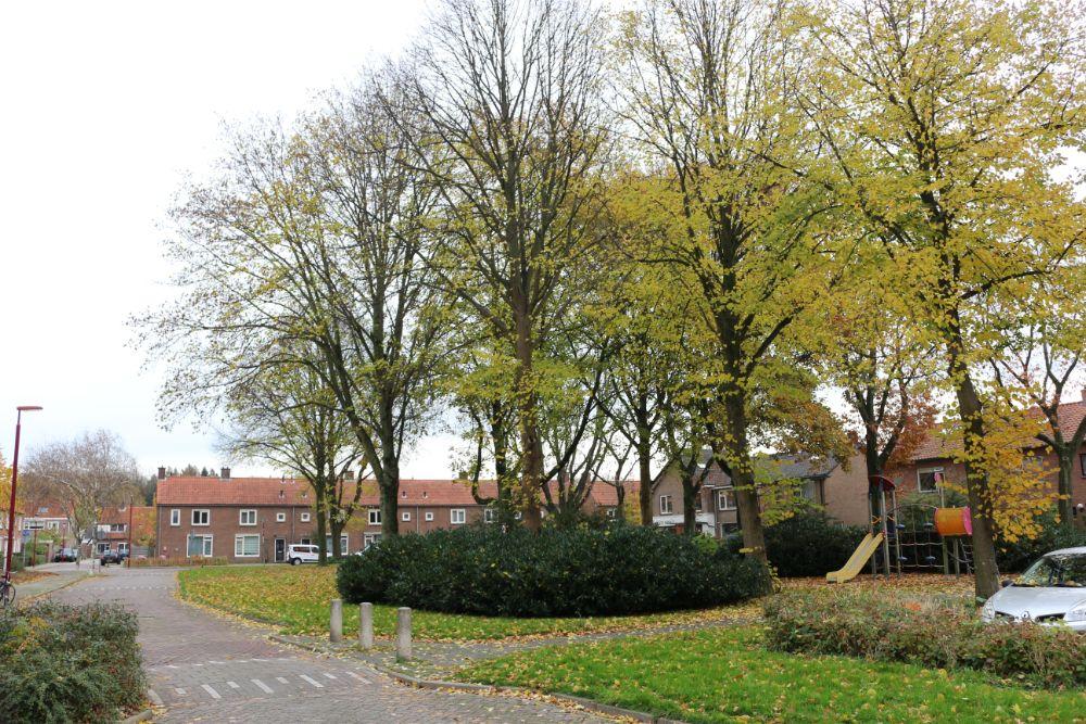 Camp Drilleveld Nieuwegein