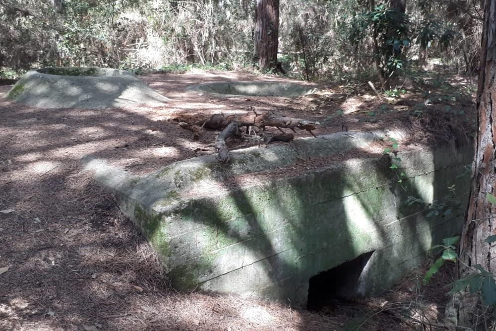 Bunker Remnants Cecina