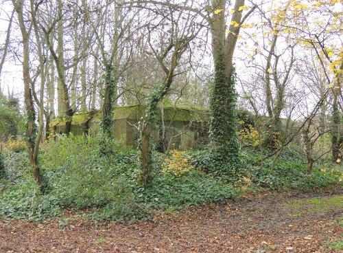 Bunker 5 Stützpunkt Brünhild 'Park Toorenvliedt'