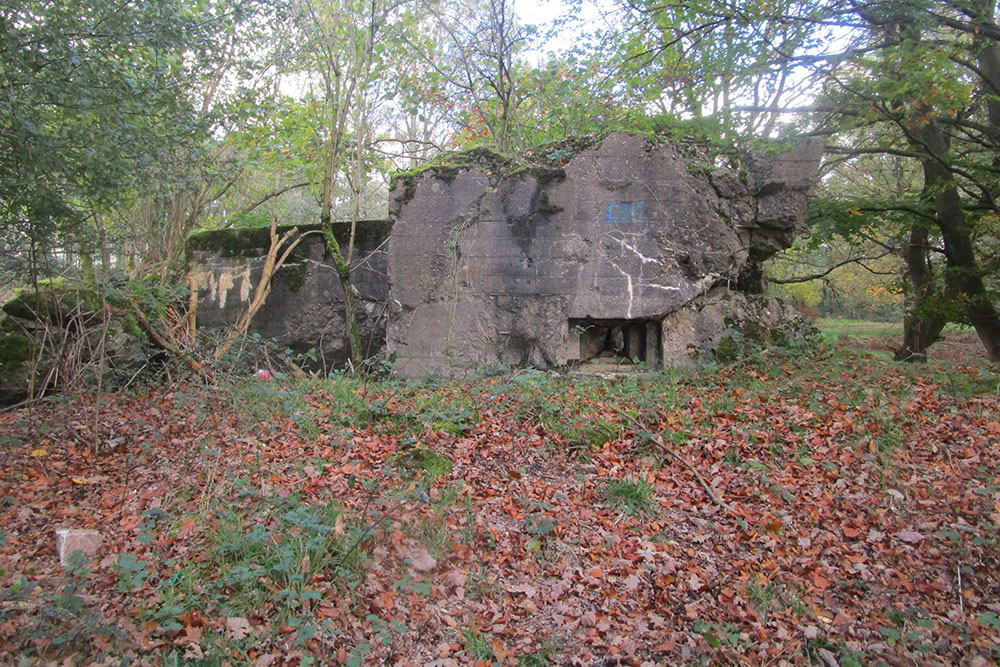 Westwall - Remains Bunker 482 (Regelbau 10 Gruppenunterstand)