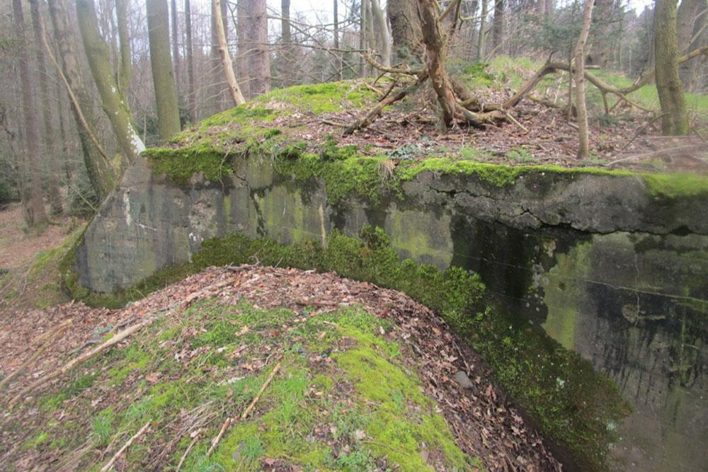 Westwall - Bunkerrestanten