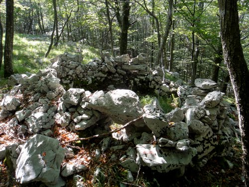 Alpenmuur - Mitrailleursnest Trstenik (A)