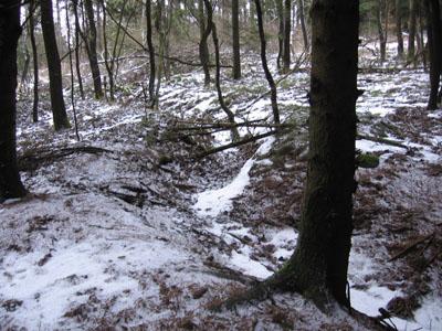 Westwall - Duitse Loopgraven