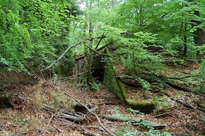 Maginot Line Casemate Biesenberg (5)