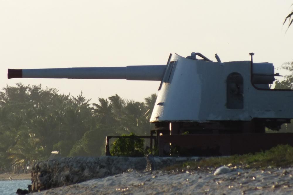 Japanese Coastal Battery