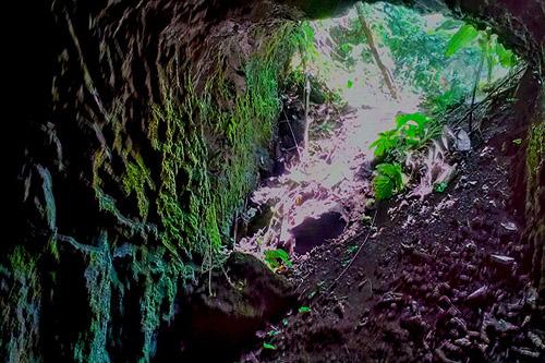 Japanese Tunnels Mount Lunaman