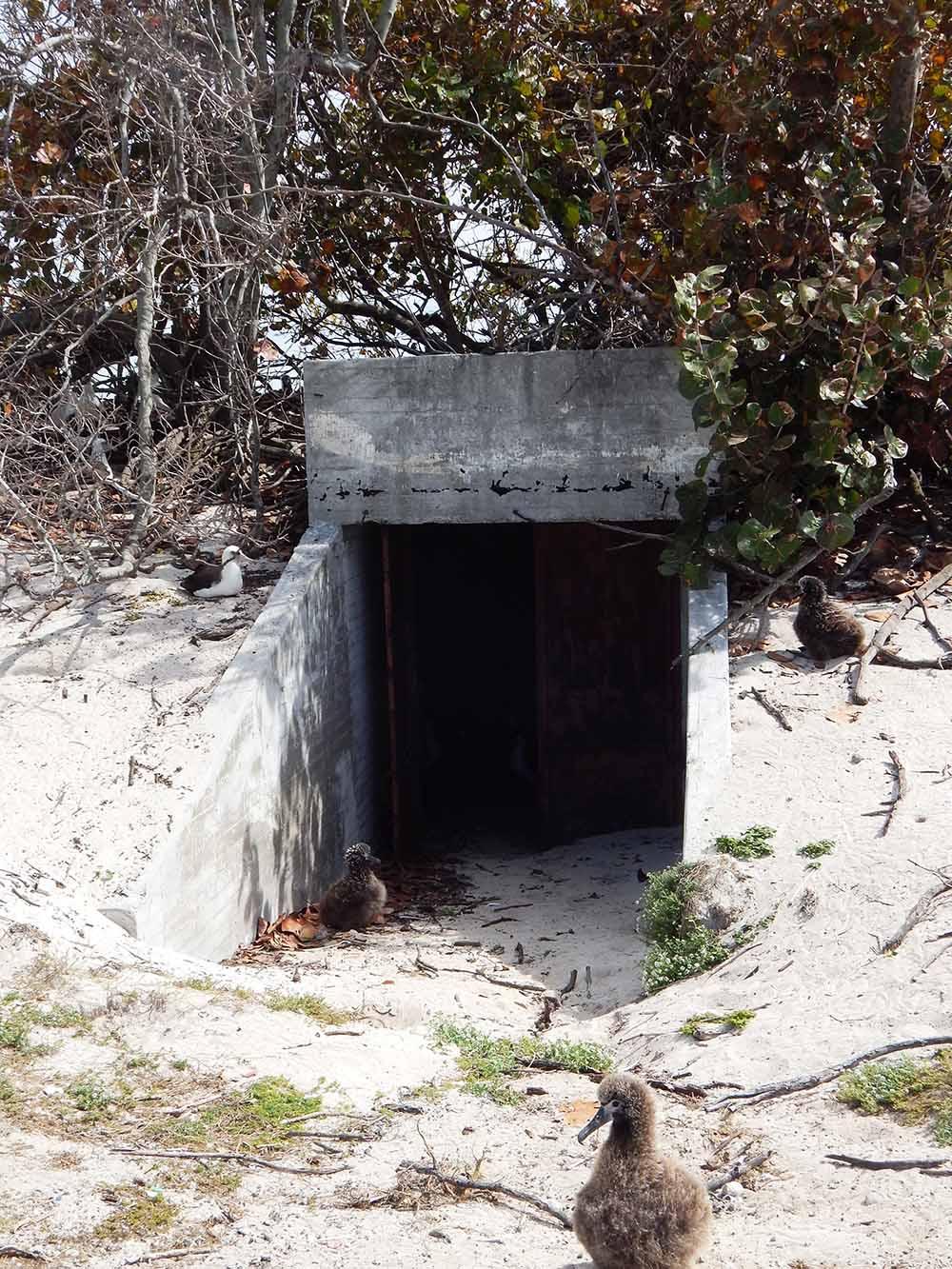 Ondergrondse Bunker