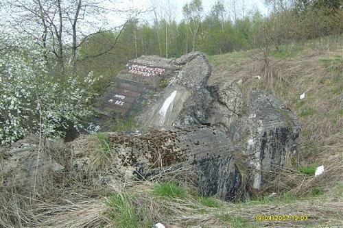 Molotov Line - Remains Casemate Sanok (E)