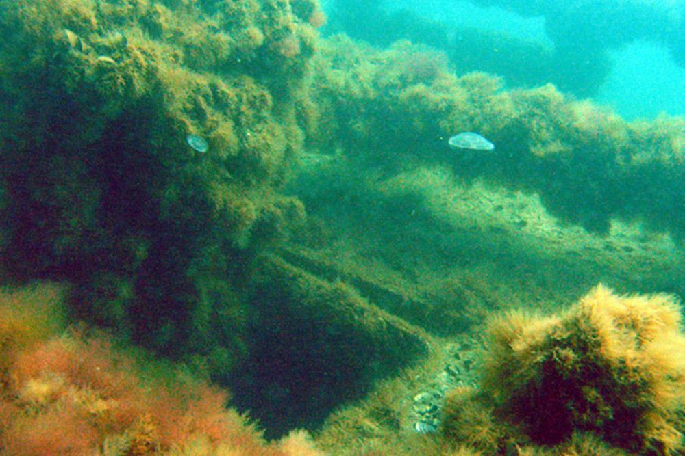 Shipwreck H.M.S. Southwold (L10)