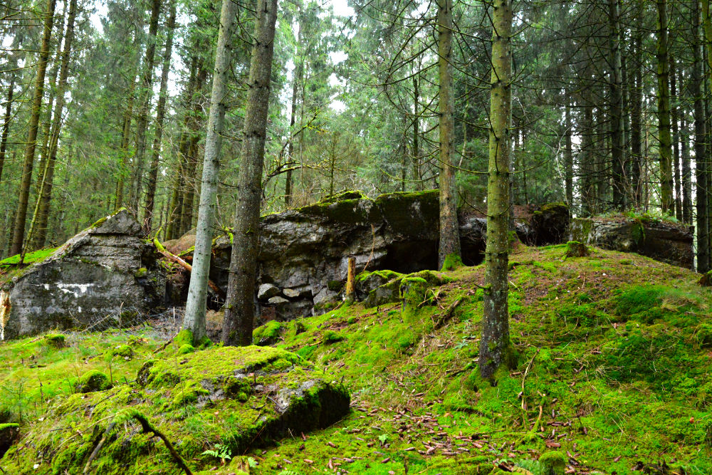 Bunker 221 Westwall Wahlerscheid