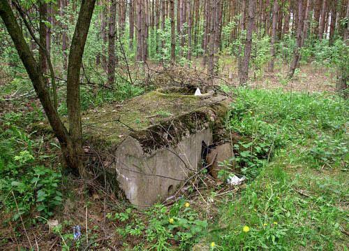 Rawka-Bzura-Stellung - Ringstand 58c Ruda (B)