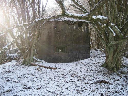 Westwall - Restant MG-bunker Oberemmel