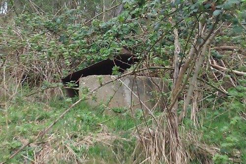 Westwall - Regelbau 106b Bunker Dillingen