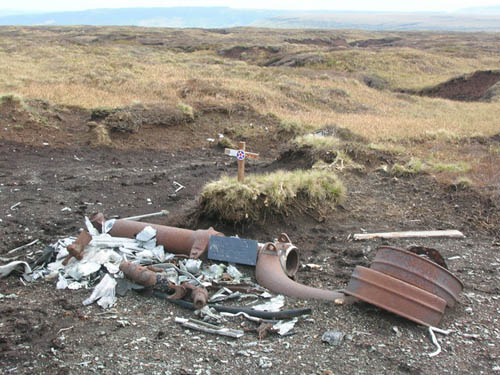 Crash Site & Wreckage B-24H Liberator Bomber Twizle Head Moss