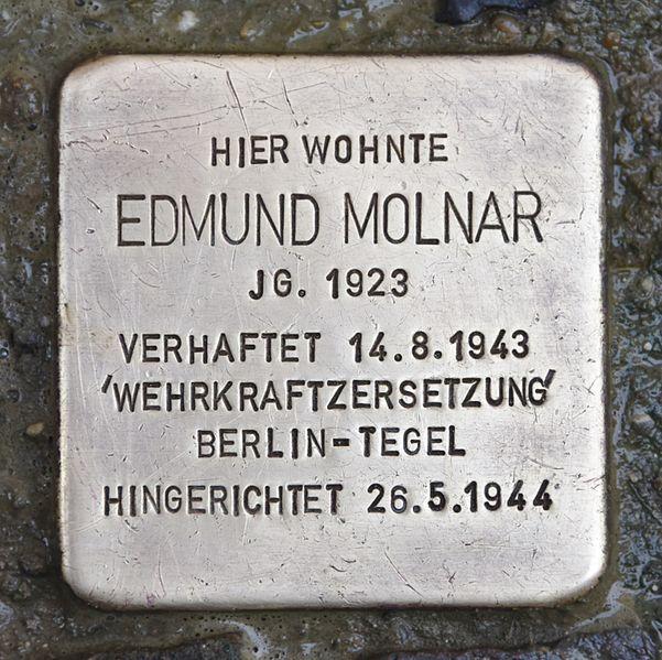 Stumbling Stone Molnarplatz 14