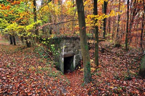 Westwall - Bunker