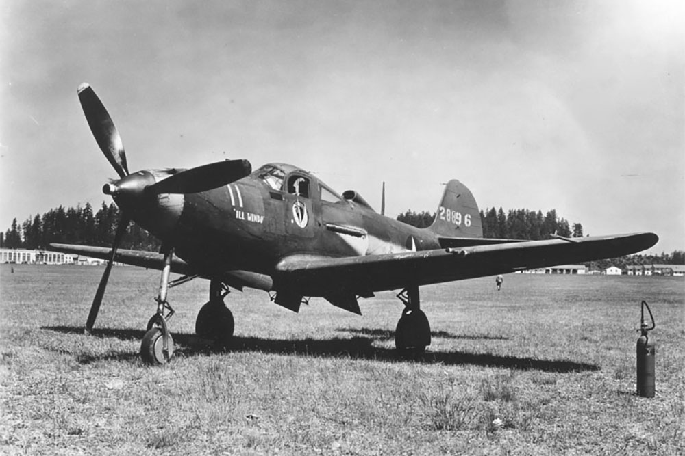 Crashlocatie & Restant P-39N-5-BE Airacobra # 42-19041