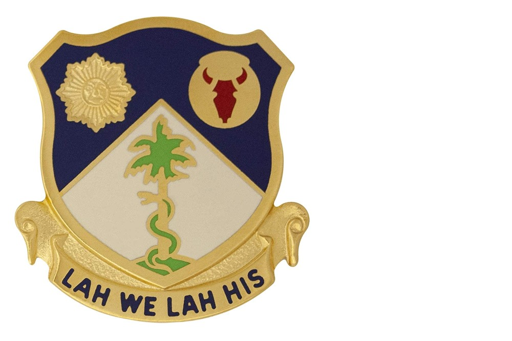 Amerikaanse 134th Infantry Regiment